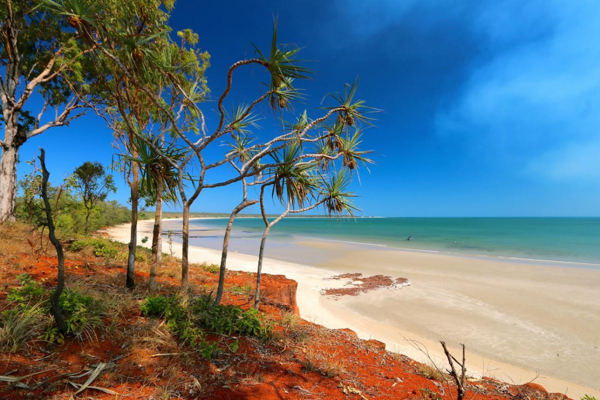 Discover Cape York.